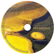Fragments-disc-large